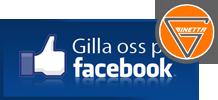 Ginetta på Facebook
